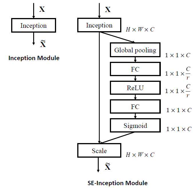 SE-Inception